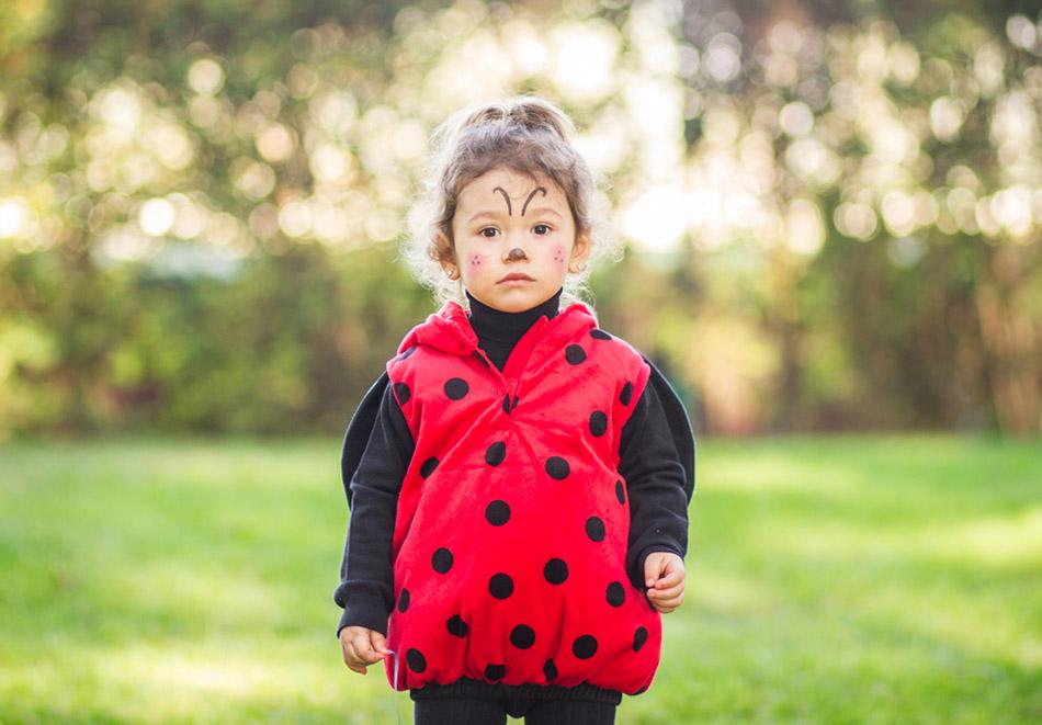 disfraz de mariquita niña